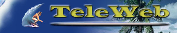 TeleWEB logo